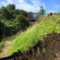 斜面地の造園のサムネイル
