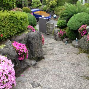 和風庭園の年間管理