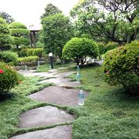 和風庭園の年間管理のサムネイル