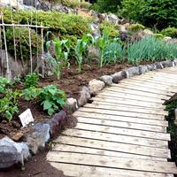 お庭造り&畑造りのサムネイル